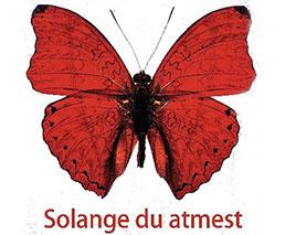 Roter Schmetterling - Solange du atmest