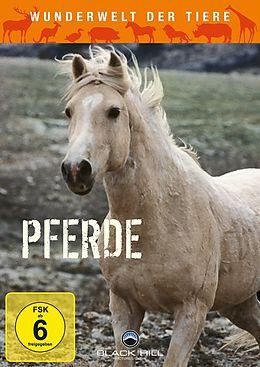 Wunderwelt der Tiere - Pferde