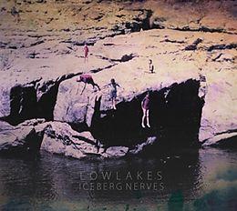 Iceberg Nerves