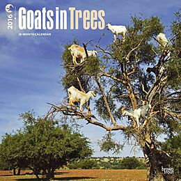 Goats in Trees [Version allemande]