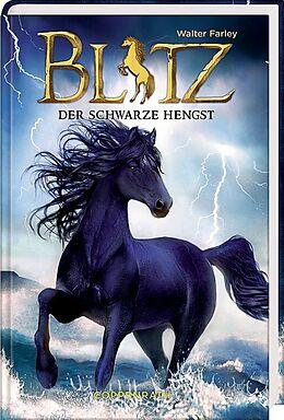 Blitz (Bd. 1)